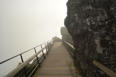 Path leading into the abyss